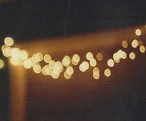 lights and fall image