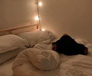 fairy lights and room image