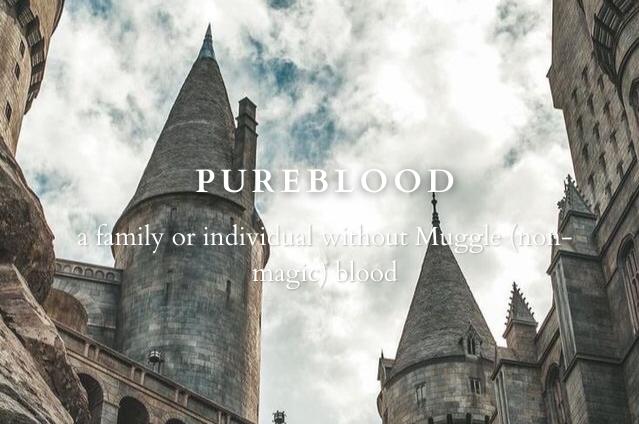 hogwarts, wizarding world, and pureblood image