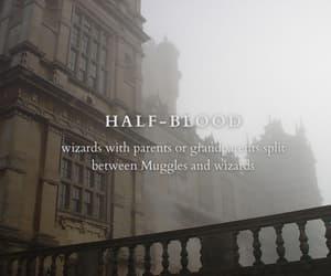 harry potter, hogwarts, and half-blood image