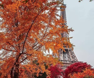 autumn, fall, and paris image