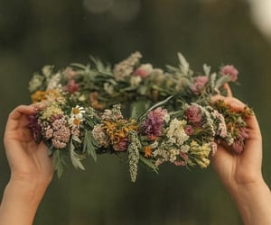 colors, flowers, and hands image