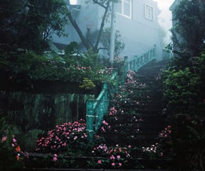 building, flowers, and fog image