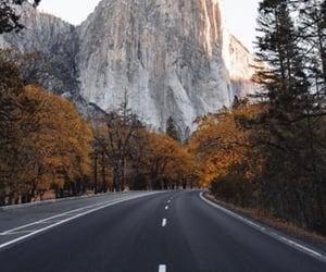 adventure, america, and autumn image