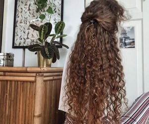 brown hair, curly hair, and fashion image