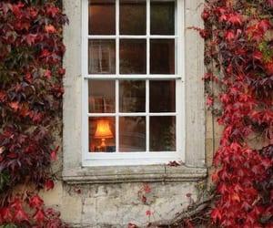 autumn and window image