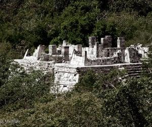 abandoned, history, and mayan image