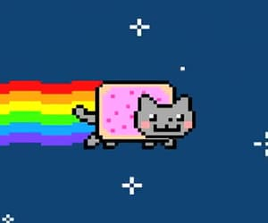 aesthetic, rainbow, and rainbow cat image