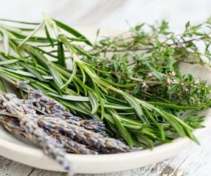 herbs, natural, and herbal image