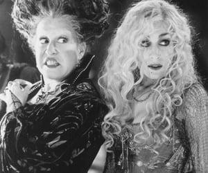 Halloween, movie, and hocuspocus image