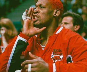 basket, chicago bulls, and sport image