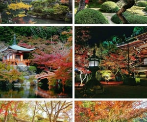 autumn, kyoto, and japan image