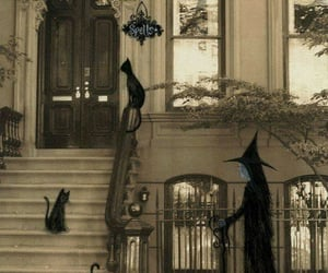 Halloween, cats, and witch image