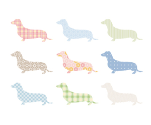 dachshund, dog, and doxie image