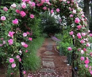 aesthetic, beautiful, and garden image
