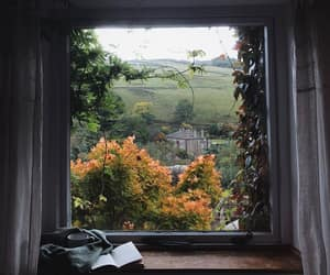 book, window, and autumn image