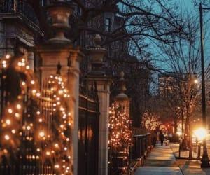 autumn, light, and winter image