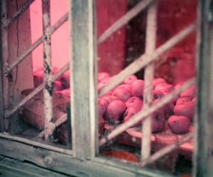 apple, Film Photography, and still life image