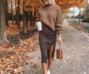 chic, fall, and outfit image