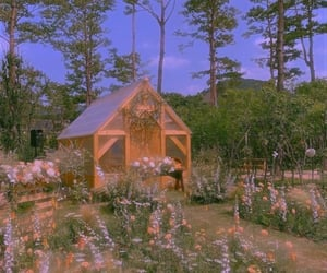 flowers, plants, and wood house image