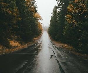 road, autumn, and rain image