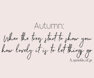 autumn, fall, and post image