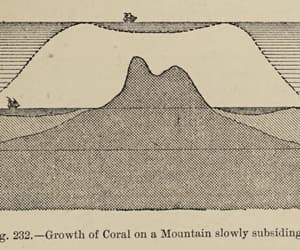 19th century, diagram, and geography image