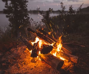 autumn, campfire, and cats image
