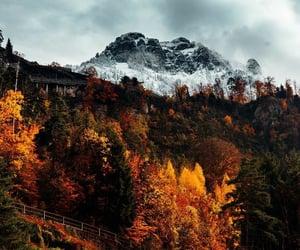 autumn, fall, and mountain image