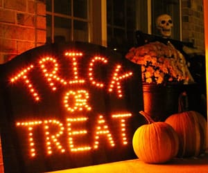 Halloween, decoration, and pumpkins image