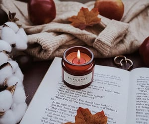 apples, book, and candle image