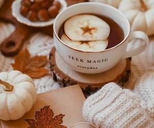 fall, pumpkin, and tea image
