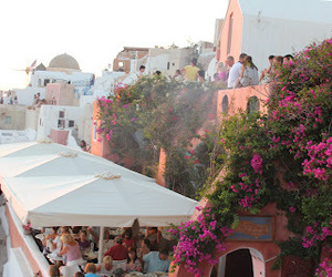 flowers, Greece, and santorini image