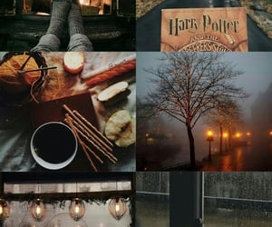aesthetic, autumn, and bucket list image