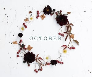 article, birthday, and october image
