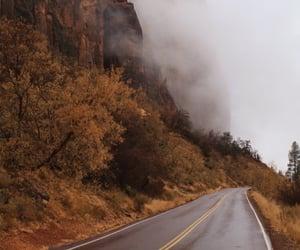 fall, fall leaves, and fog image