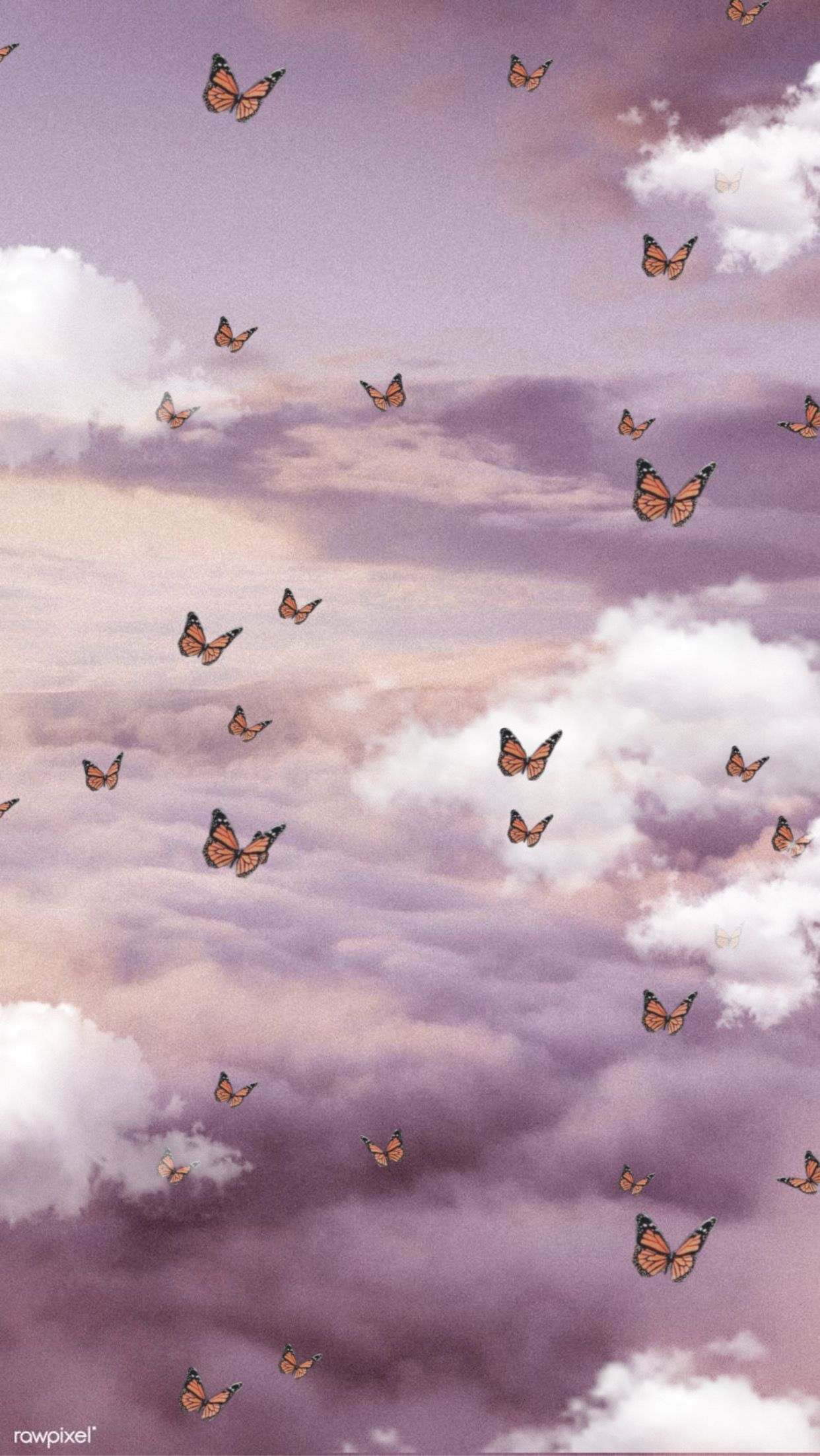 aesthetic, white, and butterfly image
