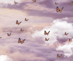 aesthetic, butterfly, and clouds image