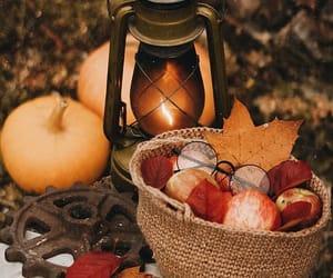 pumpkin, apple, and autumn image