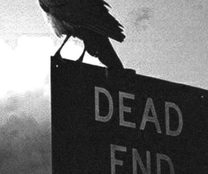 dark, black, and dead end image
