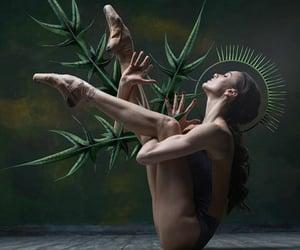 bailarina, belleza, and danza image