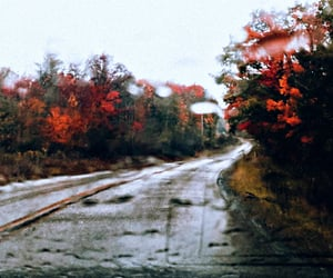 autumn, edit, and fall image
