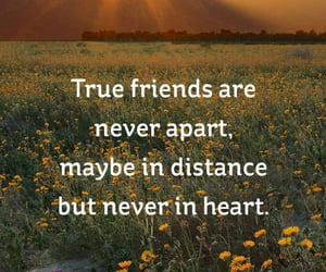 close, heart, and real friends image