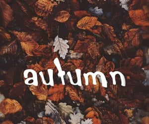 autumn, octobre, and wallpeper image