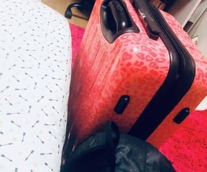 pink, suitcase, and travel image
