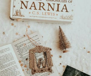 books, narnia, and reading image