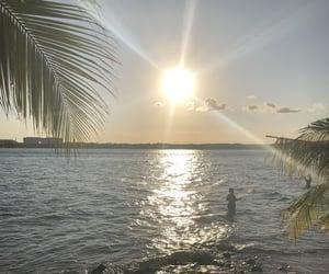 autoral, beach, and inspiration image