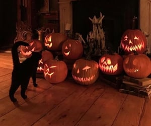 aesthetic, Halloween, and photography image
