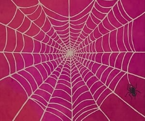 heart, spider, and spider web image