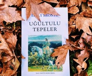 autumn, book, and Drake image
